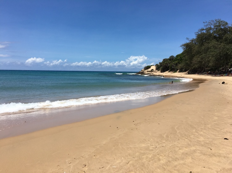 main beach tofo